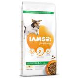 IAMS Dog Adult Small & Medium Chicken