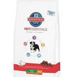 Hills Canine VetEssentials Dry Puppy Large Breed 12 kg