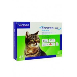 Effipro DUO Cat (1-6kg) 50/60 mg, 4x0,5 ml