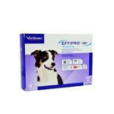 Effipro DUO Dog M (10-20kg) 134/40 mg, 4x1,34 ml